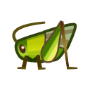 Grasshopper NH Icon.png