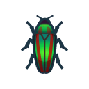 Jewel Beetle NH Icon.png