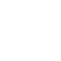 EagleSpeciesIconSilhouette.png
