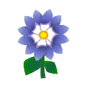 Blue Dahlia PC Icon.png