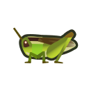 Rice Grasshopper NH Icon.png