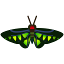 Rajah Brooke's Birdwing NH Icon.png