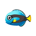 Surgeonfish PC Icon.png