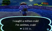 CaughtMittenCrab.jpg