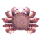 Horsehair Crab PC Icon.png