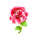 Gothic Red Rose PC Icon.png